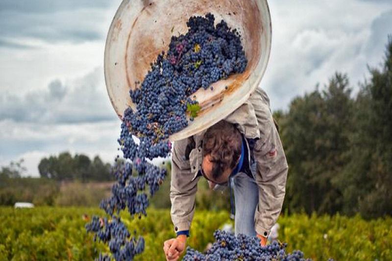All Tours List Loire Valley Wine Tour